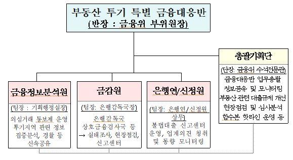 부동산 투기 특별 금융대응반 및 총괄기획단 구성